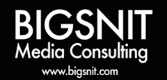 Bigsnit Media Consulting Inc Logo